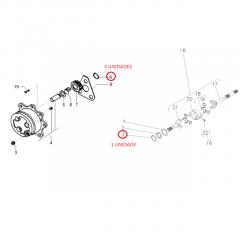 Aneis Trava das Engrenagens da Tração e Ponta Eixo - Tração 4x4 Carraro 20.14 - CASE / NEW HOLLAND / MASSEY FERGUSON / FORD